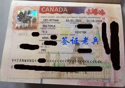 Psed Mr Wang's visitor visa